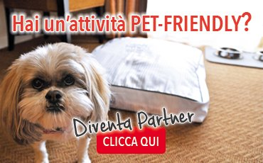 hai un'attività pet friendly?