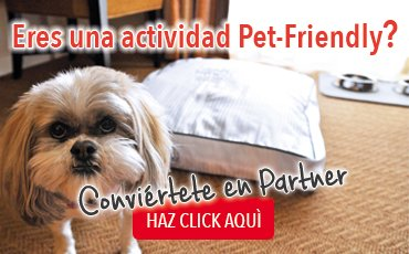 banner_attivita_es