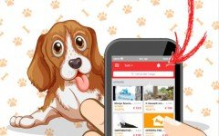 Coupon sconto dedicati al mondo pet!