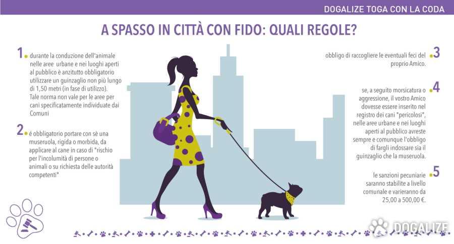Cane passeggiata: normative e regole cane a passeggio