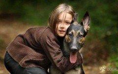 Bimbo vivo grazie alla cagnolina che lo ha allattato | Dogalize