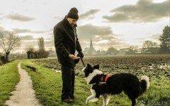 Testamento animali. Come assicurare l'eredità al cane o gatto?