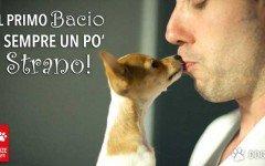 Baciare il tuo cane fa bene al cuore