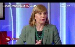 """ella puntata del """"Tg2 Insieme"""" di venerdì 22 maggio, Sara Colnago, amministratrice di Dogalize, è stata invitata a parlare di amore per gli animali"""