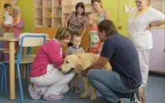 Pet Friendly Hospital: animali in ospedale per la pet therapy
