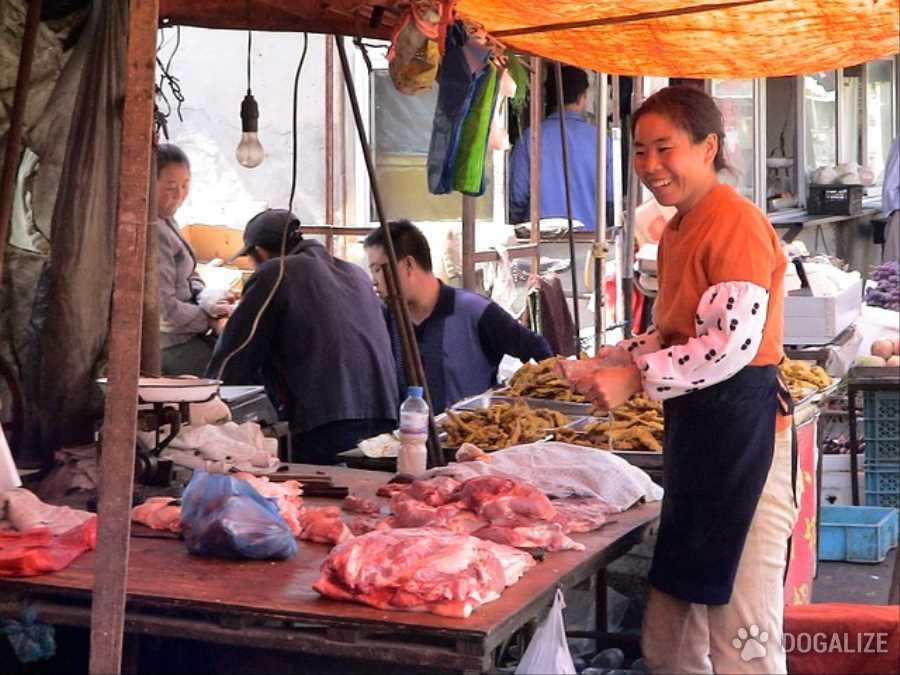 Il tema della carne di cane mangiata in alcune zone della Cina è un argomento scottante,
