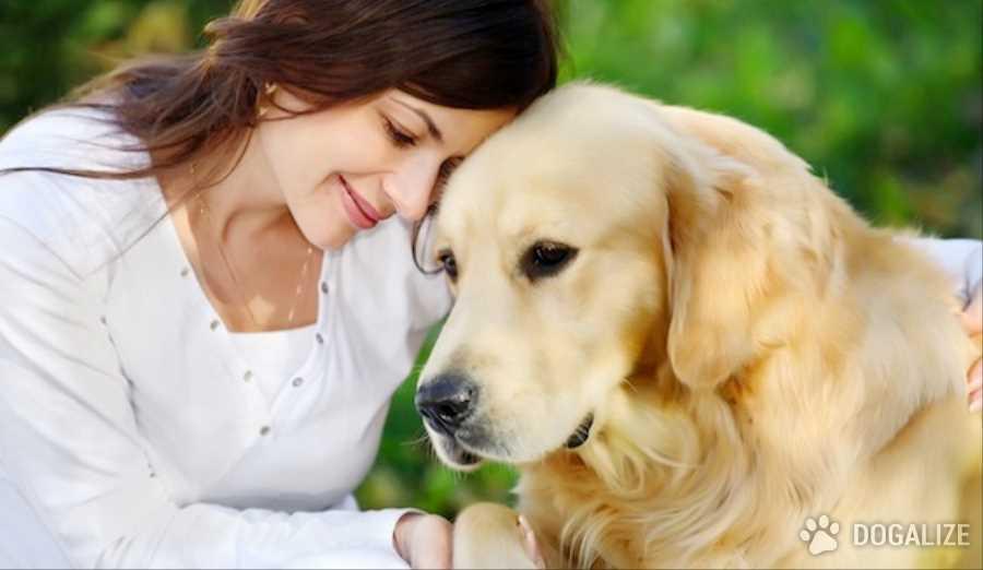 Sentimientos y mascota