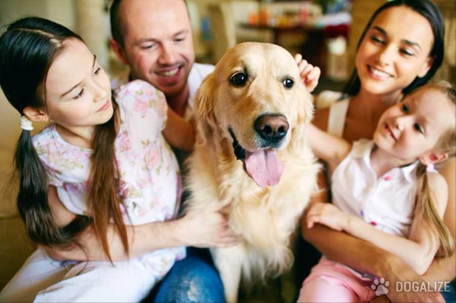 El mejor antidoto para tu perro? Tu!