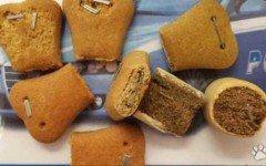 Foggia: biscotti per cani con punte metalliche