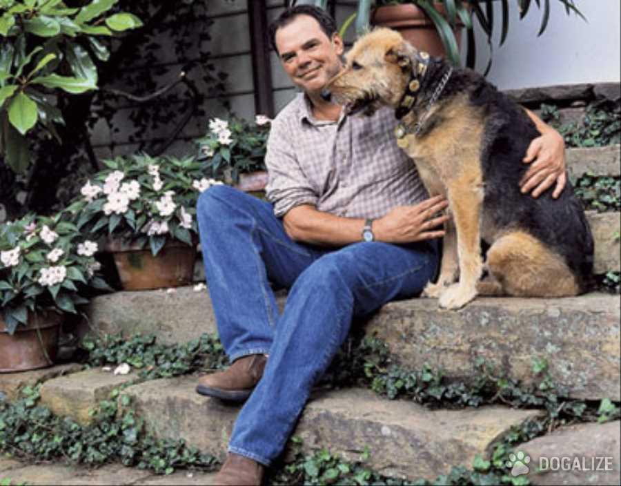 Cane in canile dopo aver salvato il suo proprietario