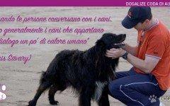 La straordinaria comunicazione col tuo cane | Dogalize