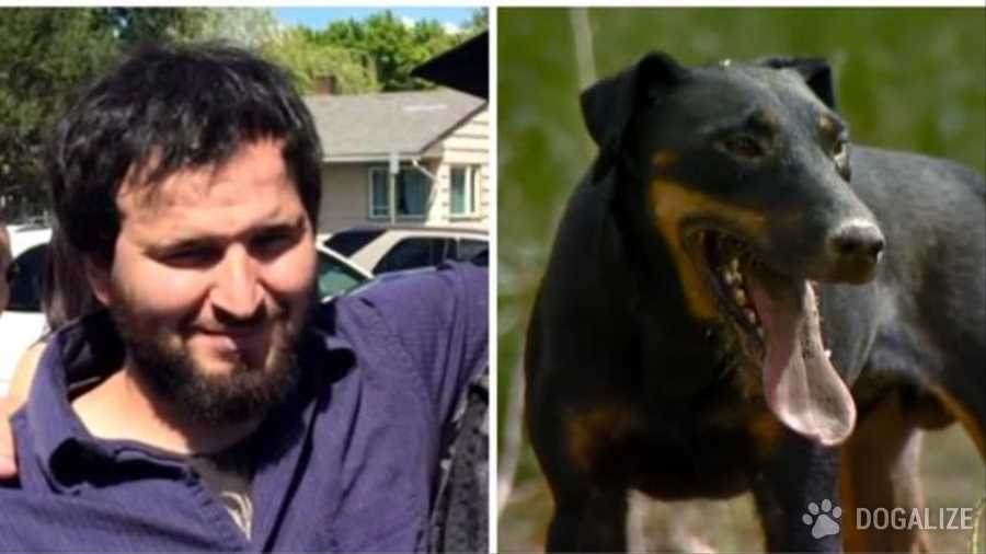 Un ragazzo di 30 anni è morto nel tentativo di salvare due cuccioli da un buco profondo