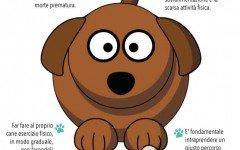 cane obeso cane in sovrappeso