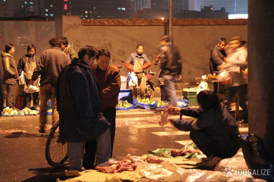 """Cina - Yulin, Il giorno del solstizio d'estate, in questa città si tiene il """"Festival di Yulin"""", in cui si festeggia con carne di circa 10 mila cani."""