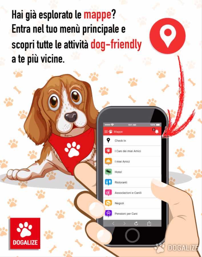 Sei in cerca di un attività Pet Friendly? Scopri le mappe di Dogalize!