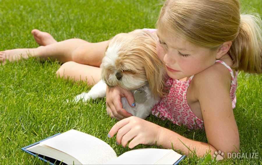 Lectura con perros: mejora la concentraciòn
