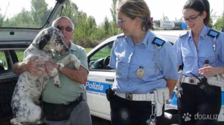 Cane rubato. Denunciato per accattonaggio con cane