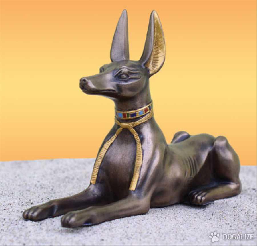 perros de egipto