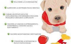 Educazione del cane: Giocare con un cucciolo