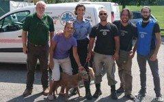 Meticcio maltrattato con collare elettrico da cacciatore: l'Enpa salva il cagnolino