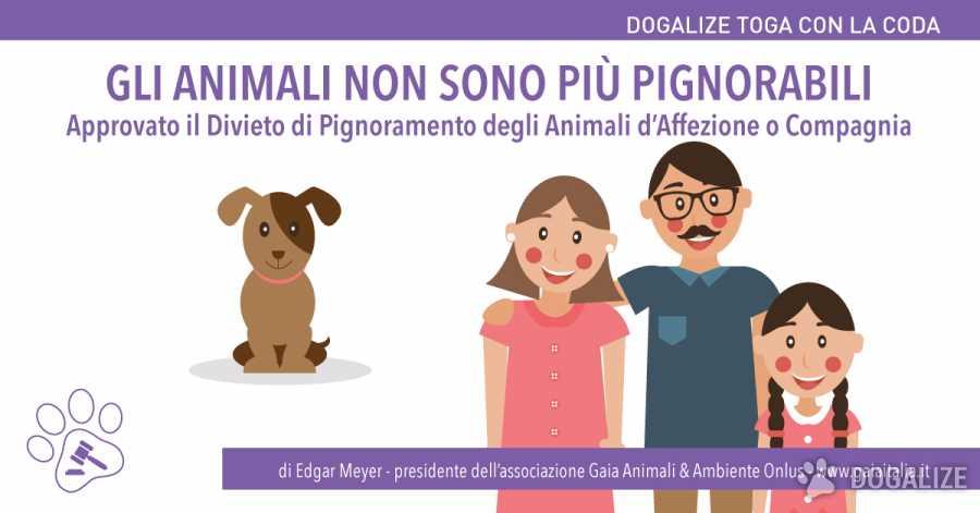 pignoramento animali d'affezione