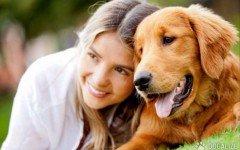 Tu perro confia en ti? Las respuestas de los canes