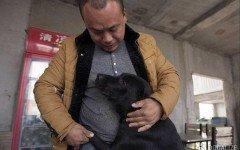 rifugio per cani