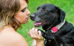 Dog's need: Giving Affection to Your Dog