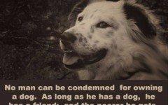 A dog is a man's best friend!