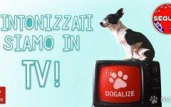 la trasmissione TV Seguimi, in collaborazione con Dogalize, ogni lunedì ore 21 su Odeon.