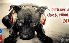 Disturbo della quiete pubblica: cosa dice la legge