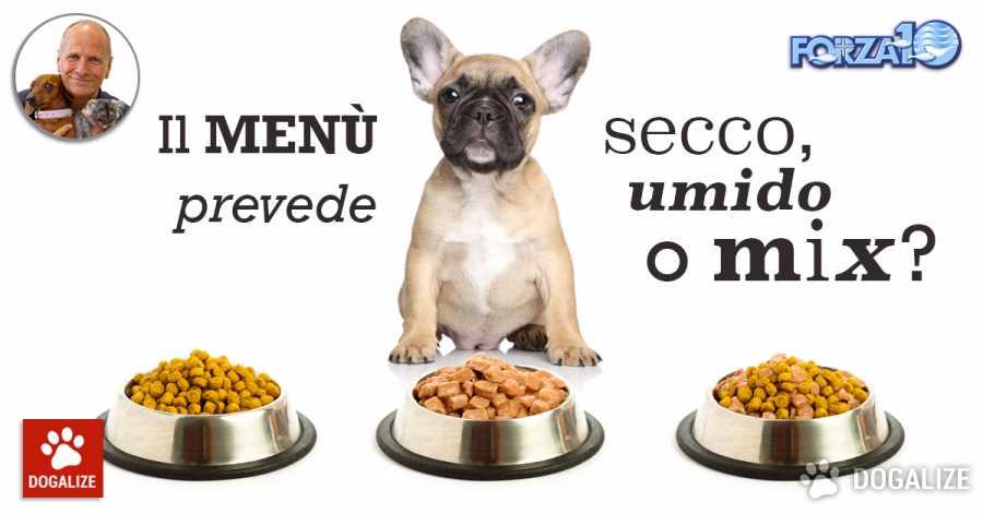 Il Cibo Per Cani E Cibo Per Gatti Prevede Secco Umido O Un Mix