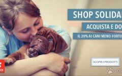 shop solidale