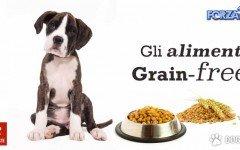 grain free per cani