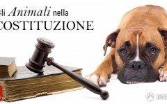 animali nella costituzione