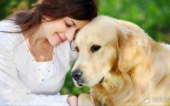 L'importanza di pulire gli occhi del cane