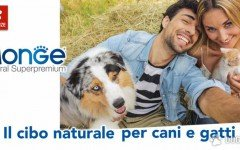 Alimentazioni cani: I consigli nutrizionali per cani