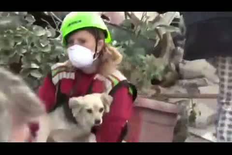 Terremoto - estratti vivi due cani intrappolati nelle macerie