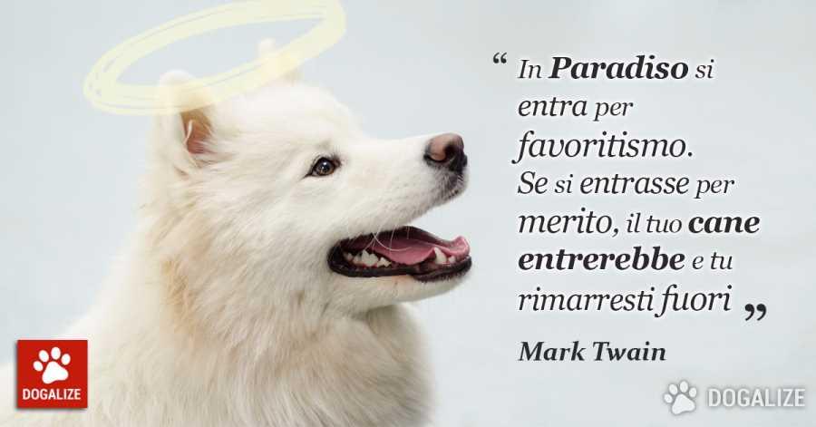 Frasi sugli animali Mark Twain ha centrato il punto!