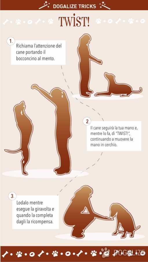 Come insegnare al cane a ballare