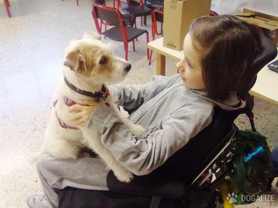 Il cane e la pallina del cambiamento: Pet Therapy story