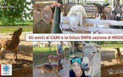Enpa Sezione Modena