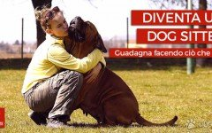 cerchi un pet sitter? mappe pet friendly