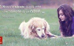 amore di un cane