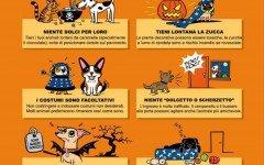 Halloween per cani e gatti ! I Consigli per un buon Halloween