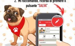 applicazione per amanti degli animalii app per cani
