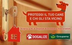 Assicurazioni on-line per cani: RC Dogalize!