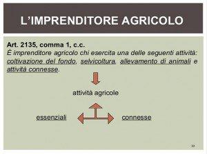 articolo imprenditore agricolo