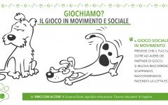 Giochi di cani: il gioco sociale e il gioco in movimento