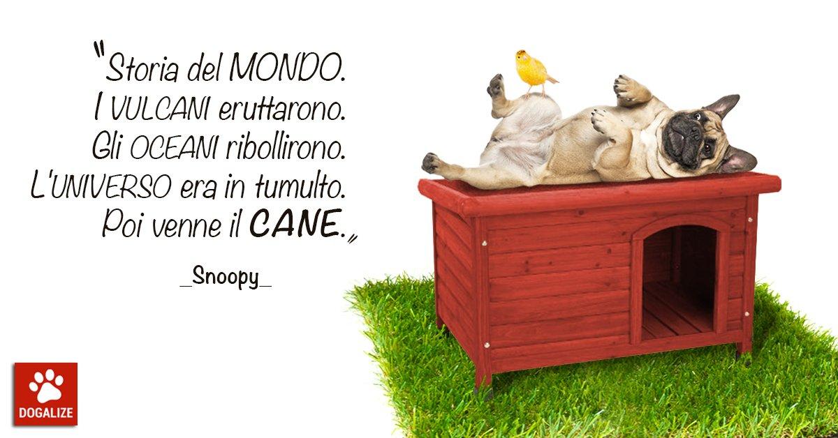 Aforismi per cani: visione del mondo di Snoopy...e come dargli torto?